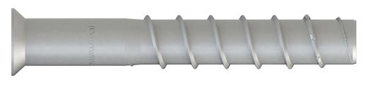 Asphaltschraube TSM 16 x 100 mit Innengewinde M 10 x 20
